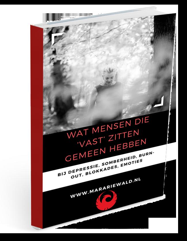 e-book Wat mensen die 'vast' zitten gemeen hebben. Mara Riewald 2019.