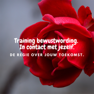 Training bewustwording. In contact met jezelf. Mara Riewald