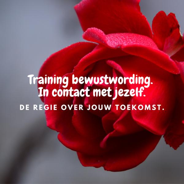 Training bewustwording. In contact met jezelf. Mara Riewald