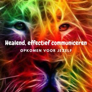 Training Healend effectief communiceren. Mara Riewald